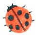 beetle-icon
